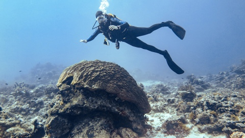 Kyle Fouke diving at the Great Barrier Reef