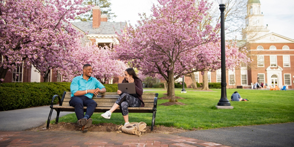 Students on a bench on the quad with cherry blossoms