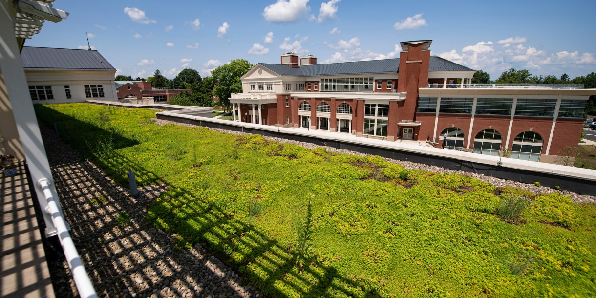 Green roof and view of Academic East