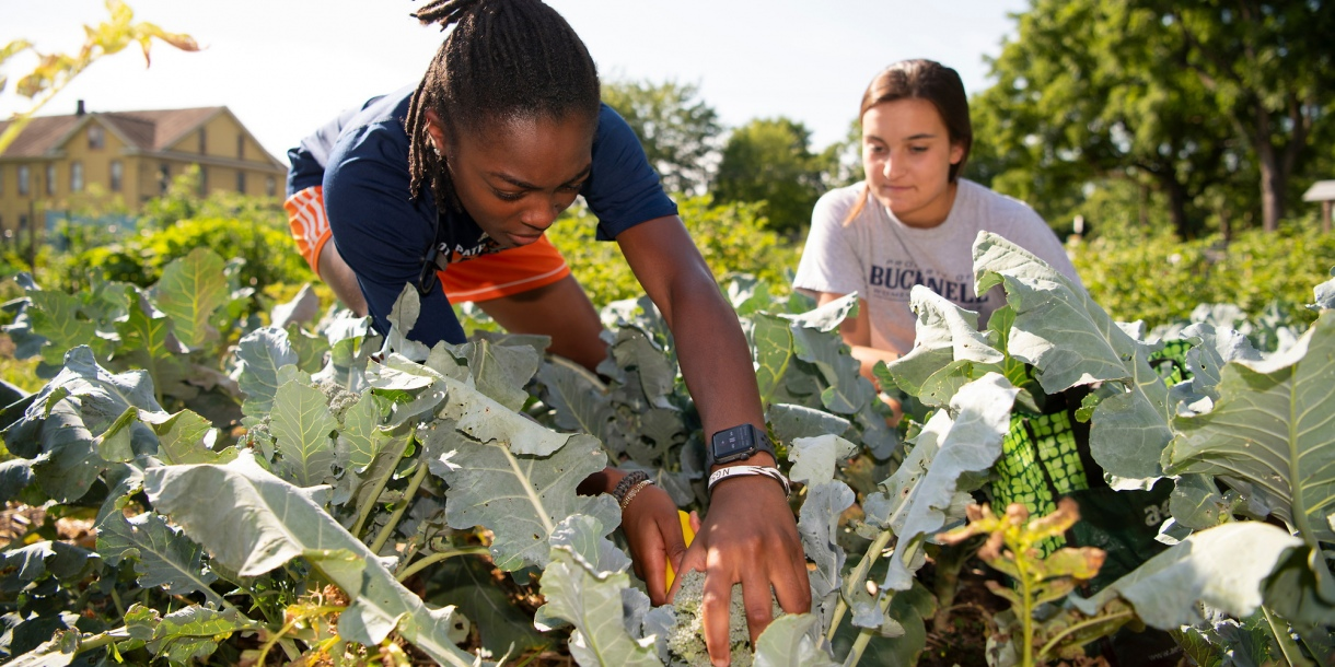 Students in the Community Garden