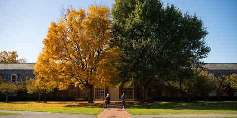 Malesardi Quad in the Fall