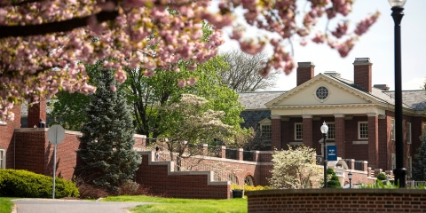 View of cherry blossoms and Coleman Hall