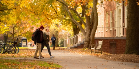 Students walking on campus with autumn leaves