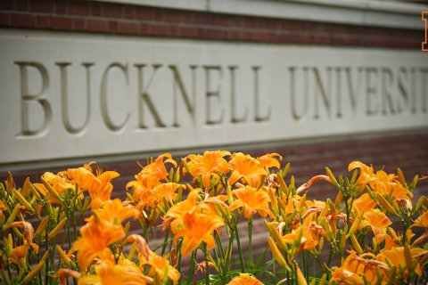Zoom Background - Bucknell University
