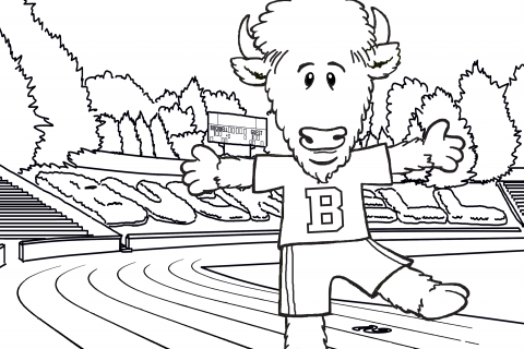 Bucky Stadium Coloring Sheet