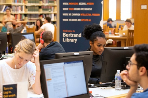Students studying away in the library