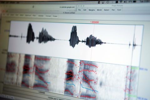 A waveform from a linguistics class