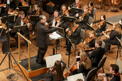 The orchestra plays at a concert