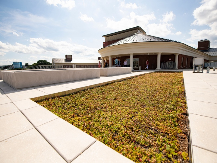 Academic East green roof