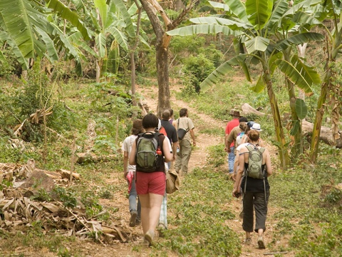 Students in the Bucknell Brigade walk through the jungle in Nicaragua